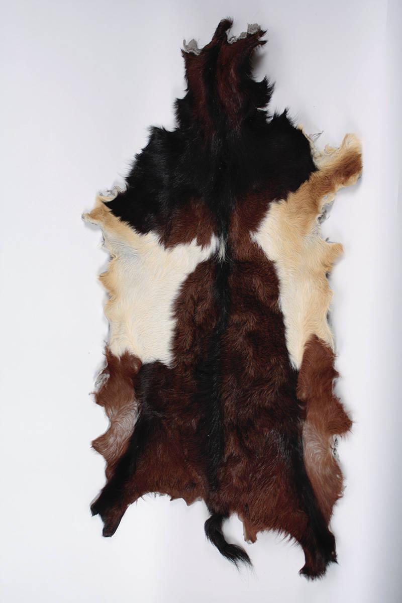 kozí-kůže