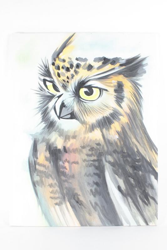 obraz-sova
