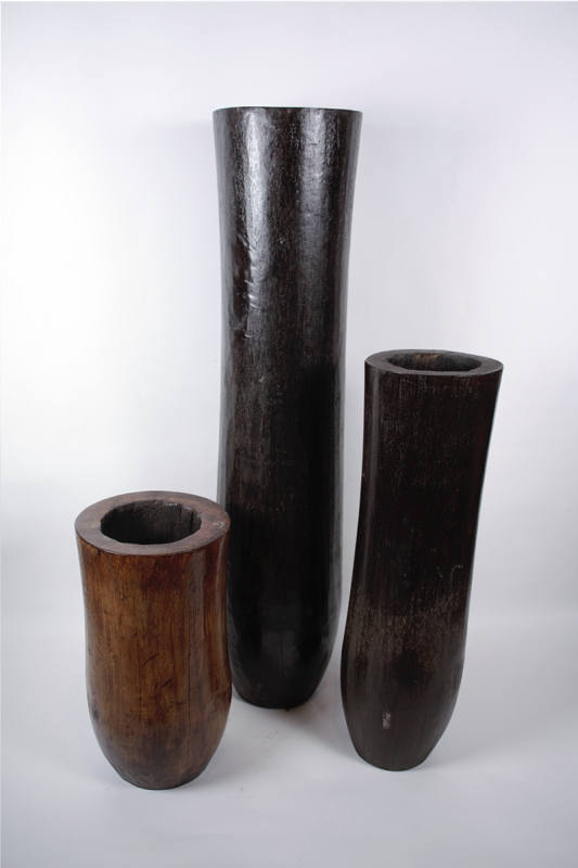 palmove-vazy